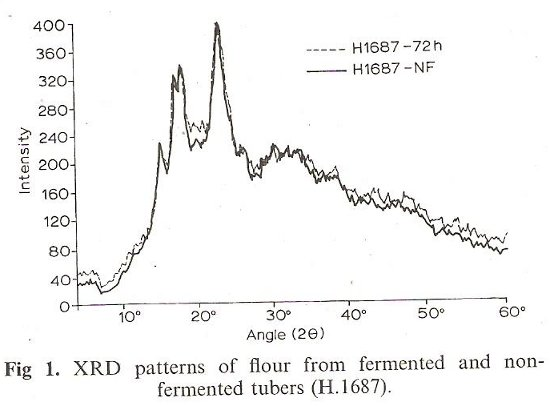 XRD Patterns of Flour from Fermented and non-Fermented Tubers